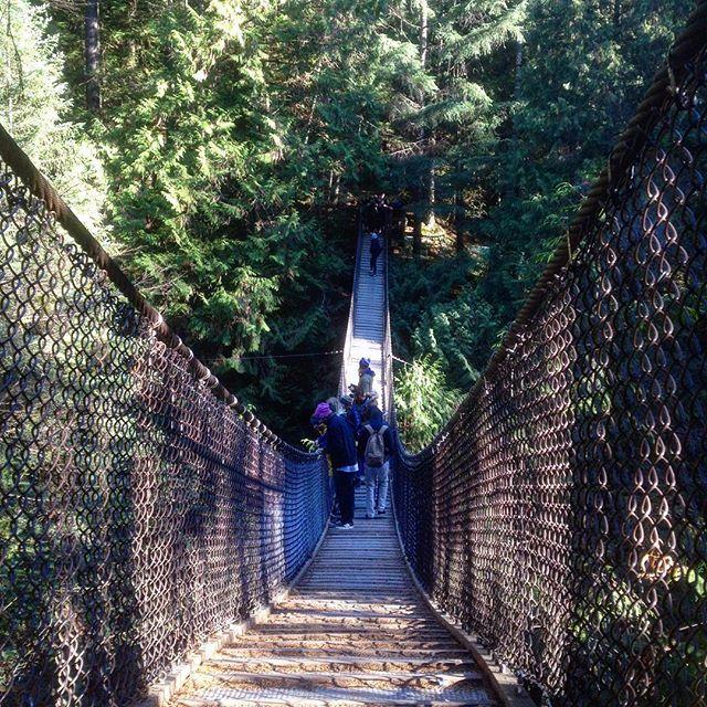 Scared of heights? 🙈 #samesunvancouver #suspensionbridge #fall #hikingadventures