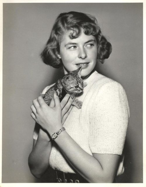 Ingrid Bergman holding a kitten #famous #people #cats