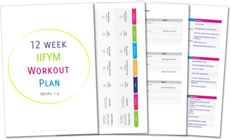 free 12 week challenge diet and exercise plan pdf