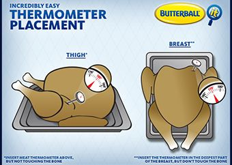 Check Your Turkey's Temperature with Incredibly Easy Thermometer Placement