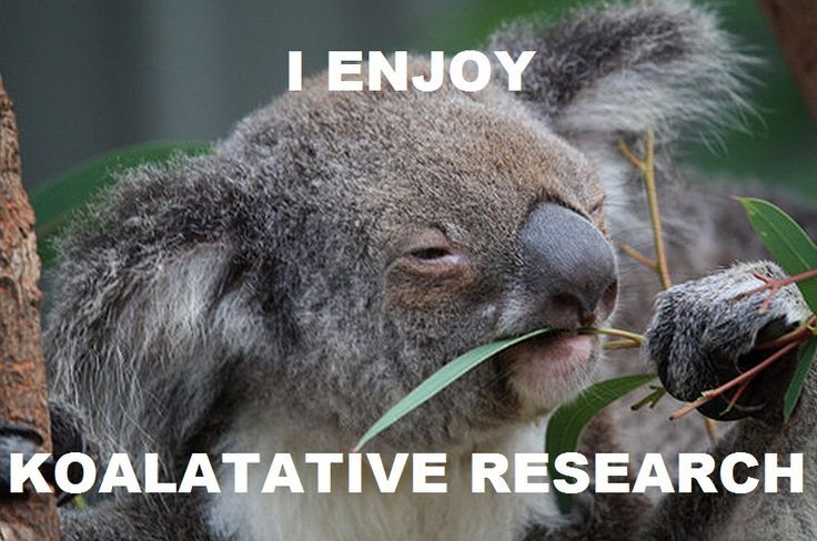 qualitative research joke