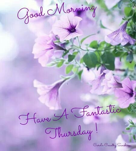 ♡ Good Morning~Have a Fantastic Thursday! ♡