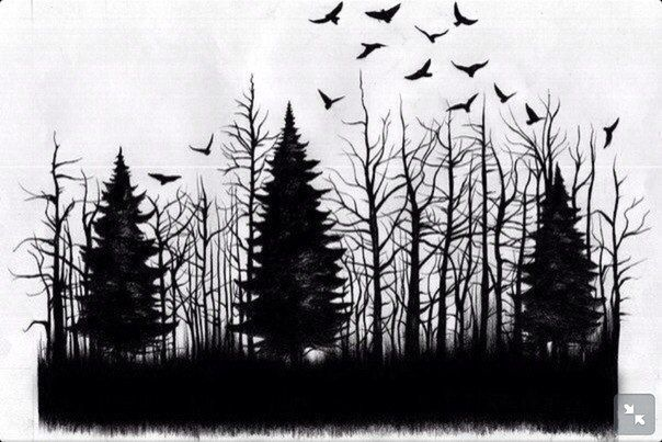 Картинки по запросу лес эскизы