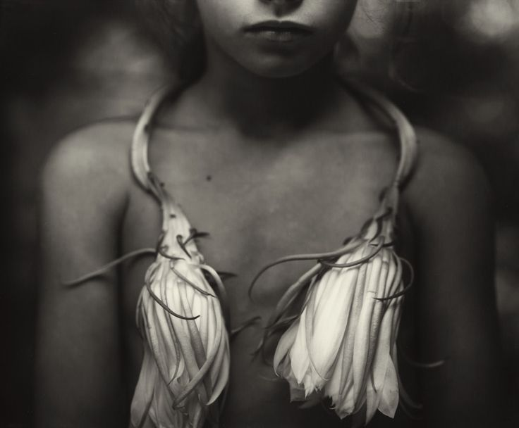 Sally Mann -  Night Blooming Cereus, 1988 - http://www.americansuburbx.com/2009/11/theory-sally-mann-by-dana-cox.html