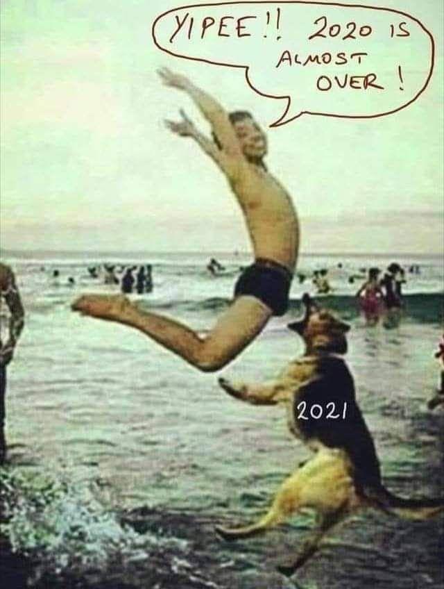 2021 Is Waitinghttps I Imgur Com O30sf6v Jpg Funny Laugh Stupid Funny Crazy Funny Memes