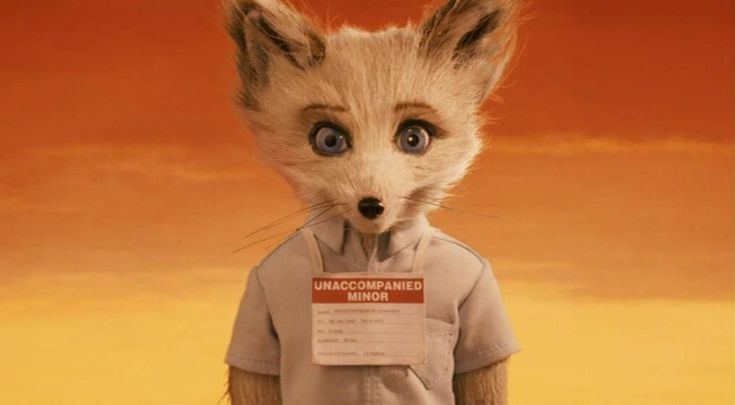 "Unaccompanied Minor. Kristofferson, voiced by Eric Chase Anderson. ""Fantastic Mr. Fox"" (2009), directed by Wes Anderson. #film #fox #orange #yellowFoxes 2009, Wes Anderson, Kristofferson, Wesanderson, Movie, Cousins, Unaccompanied Minor, Fantastic Mr Foxes, Character"