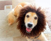 Dog Hat, Lion Hat for Dogs, Dog Lion Hat, Dog Costume, Lion Costume for Dogs, Dog Lion Costume, Lion Mane for Dogs, Large Breed Dog Costume
