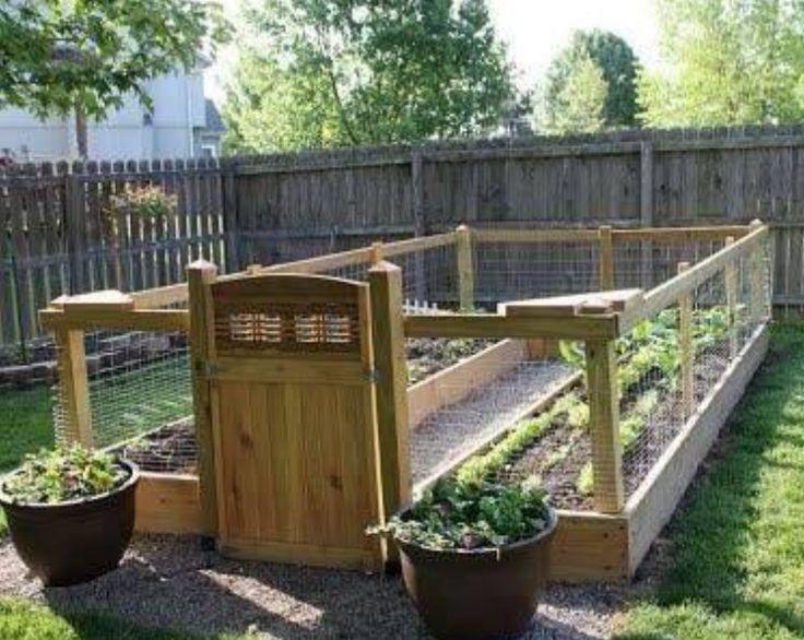 25+ Best Ideas About Box Garden On Pinterest | Raised Gardens