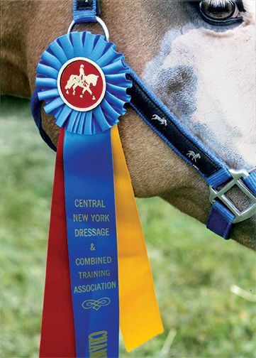 13 Best 2013 Equestrian Catalog Cover Contest Images On