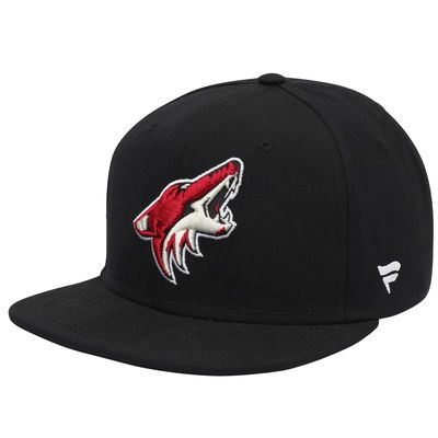 Men's Arizona Coyotes Fanatics Branded Black Emblem Snapback Adjustable Hat