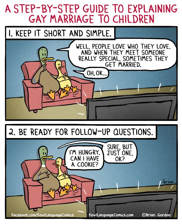 a step-by-step guide to explaining gay marriage to children ~ Fowl Language Comics
