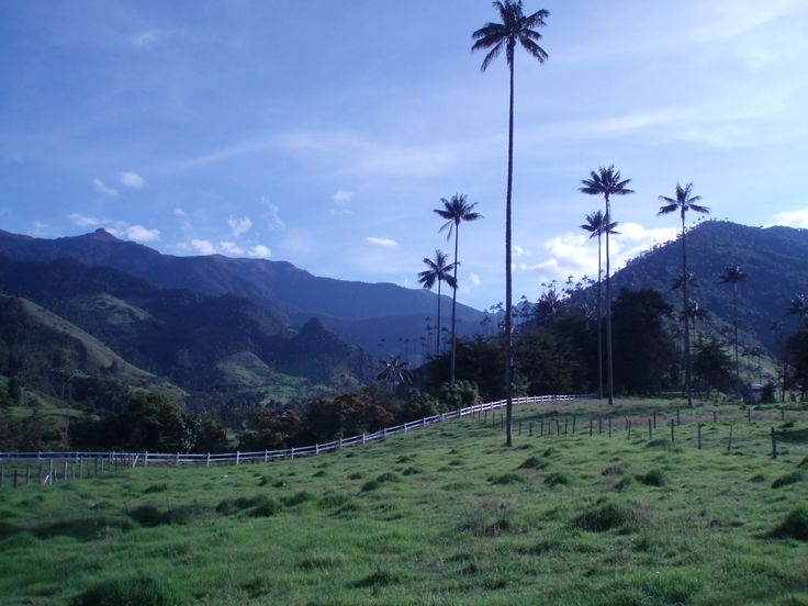 #valledelcocora -  one of those places you feel like being on a movie set