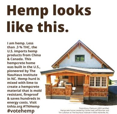 legalization of industrial hemp Industrial hemp is a type of cannabis that looks similar  with mcconnell now a lead sponsor and significant bipartisan support secured for hemp legalization,.