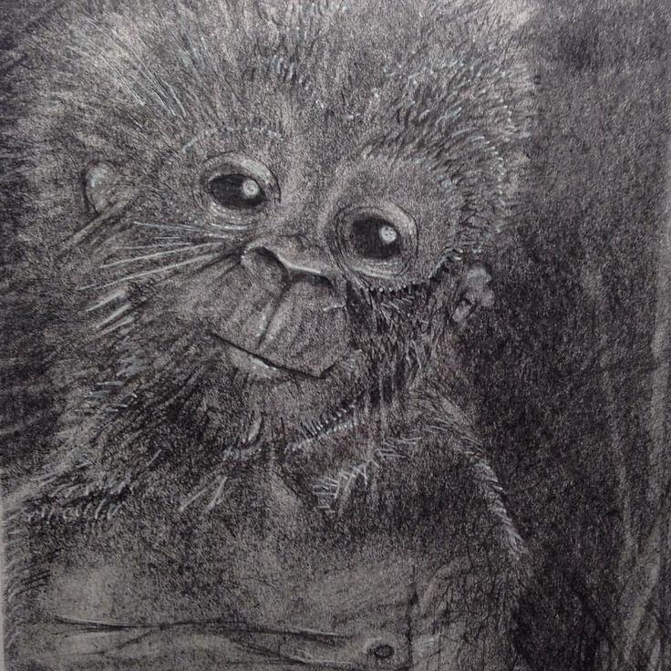#drawings #pencil #fluidowear #monkey