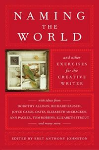 Naming the World and other exercises for the creative writer -Bret Anthony Johnston