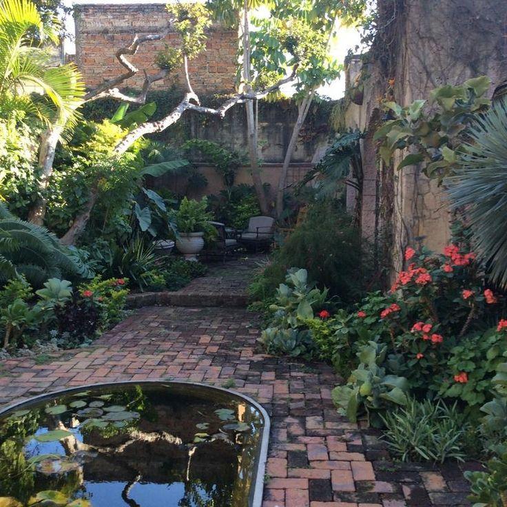 Las sabilas guadalajara mexico bob clark 39 s garden for Casa de diseno guadalajara