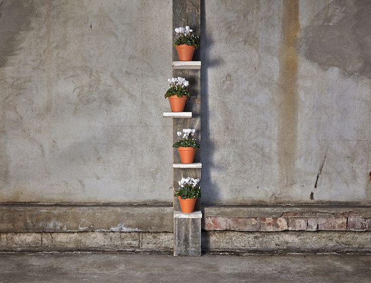 Best 85 eigen huis en tuin praxis ideas on pinterest for Tuin praxis