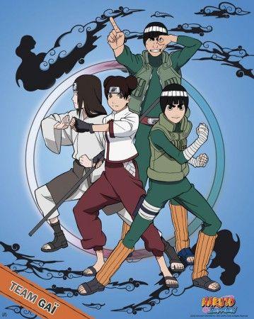 Poster Naruto Shippuden Team Gaï, Gai, lee, tenten and neji