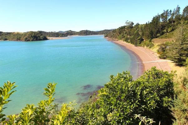 Over 20 hectares of premium waterfront land, Bay of Islands