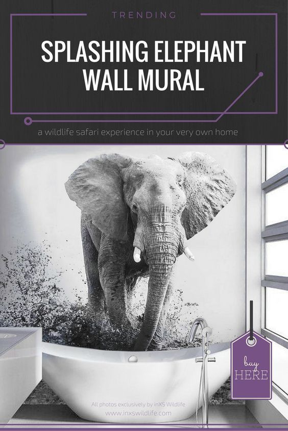 Wall murals are becoming more and more popular so spice up your bathroom with this Splashing Elephant Wallpaper and give it a whole new look and feel. The monochrome effect makes it even more realistic, as if the water is literally splashing out of the bath. #wildlifephotography #wildlifeartist #wildlifeart #wallart #wallmural #wallpaper #inxswildlife #splashingelephant #monochromeart