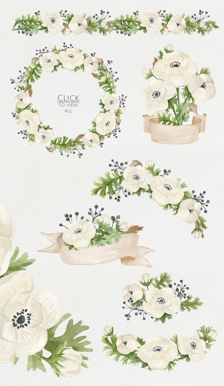 Watercolor anemones. Floral set by NataliVA on @creativemarket: All floral elements painted by hand with watercolors and will be perfect for greeting cards, wedding invitations, printing on fabric, branding and more.
