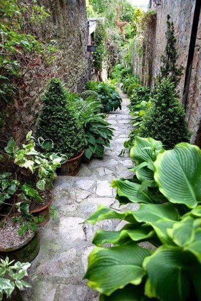 Plantes en pots. http://inspirationsdeco.blogspot.fr/2015/05/40-inspirations-pour-un-jardin-anglais.html