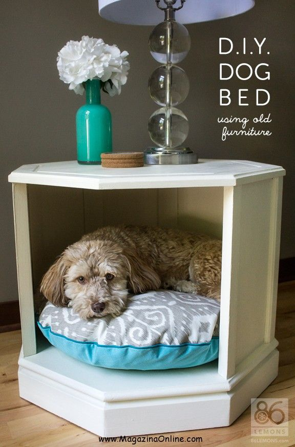 Give your animal their own space in your house! For all your DIY needs visit Walgreens.com.