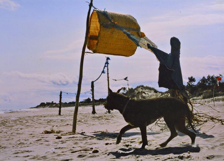 "Yury Ermolenko, ""PROTECTION OF HEAVENLY GATE DOESN'T DOZE"" (Land art project ""Baltic - Hel""), 2003, Hel Peninsula, Baltic Sea, Poland #YuryErmolenko #юрийермоленко #ЮрийЕрмоленко #yuryermolenko #юрiйєрмоленко #ЮрiйЄрмоленко #юрийермоленкохудожник #landart #balticsea #sea #sky #amazing #RapanStudio #photo #photography #metaphysics #metaphysical #philosophy #installation #лэндарт #инсталляция #art #contemporaryart #modernart #magic #texture #лэндарт #poland #hel #helpeninsula #artproject…"