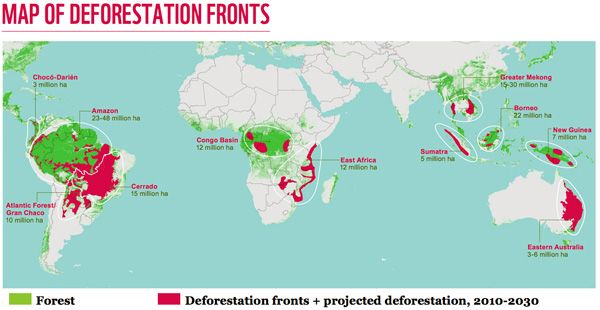 Map of DEFORESTATION FRONTS: WWF has drawn on projections in ... Deforestation Map on ecological succession map, climate change, hydroelectric dams map, land pollution, transboundary pollution map, environmental issue, world map, ozone depletion, exploitation of natural resources, global warming map, land degradation, groundwater depletion map, pesticide use map, greenhouse gas, species extinction map, glacier melt map, global warming, ecological footprint map, environmental degradation, water depletion map, tree plantation map, intensive farming map, danish language map, illegal logging, mass extinction map, forest reserves map, land use map, indoor air pollution map, environmental problems map, genetically modified crops map,