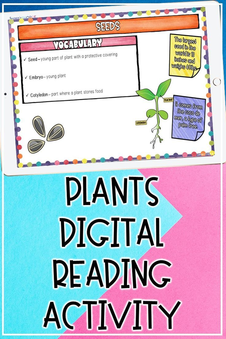 Plant Seed Angiosperm Gymnosperm Digital Reading Activity For Distance Learning Upper Elementary Science Upper Elementary Resources Teaching Upper Elementary [ 1104 x 736 Pixel ]