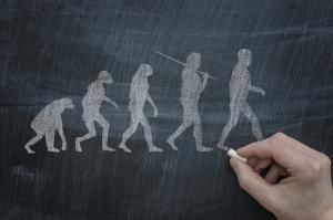 Human evolution is an application of the Theory of Evolution - Martin Wimmer/E+/Getty Images
