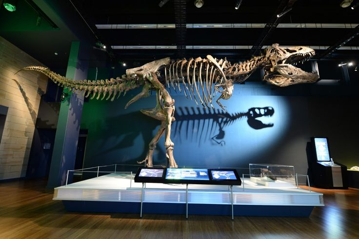 Make a date with @museumvictoria #Scienceworks next Saturday when 'Tyrannosaurs - Meet the Family' opens! WIN 2 x family passes bit.ly/tyrannosaursgiveaway