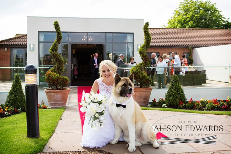 The Bride and their beloved Dog Milo who led the precession down the aisle - nottinghamshire-golf-country-club-wedding