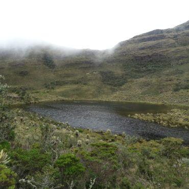 Villa-de-leyva-hinking tour-Igaque-flora and fauna-lulocolombia-travel