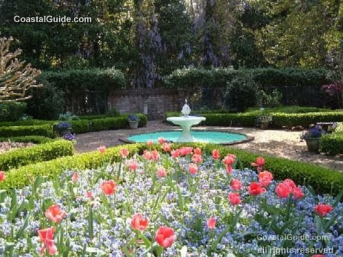 1000 images about obx gardening on pinterest gardens for Outer garden