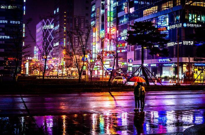 Busan Night Street Cityscape Neon Rain Umbrella Reflection South Korea Wallpaper Cityscape Fantasy City Rain Street