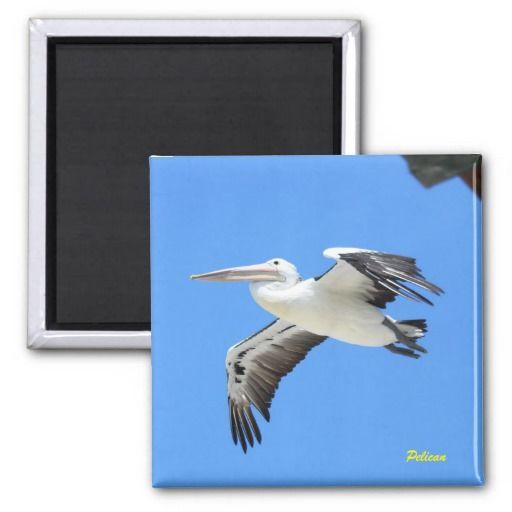 Pelican 2 Inch Square Magnet