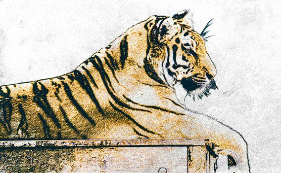 Nieuw werk in mijn werk aan de muur shop! Digitale tekening van een tijger