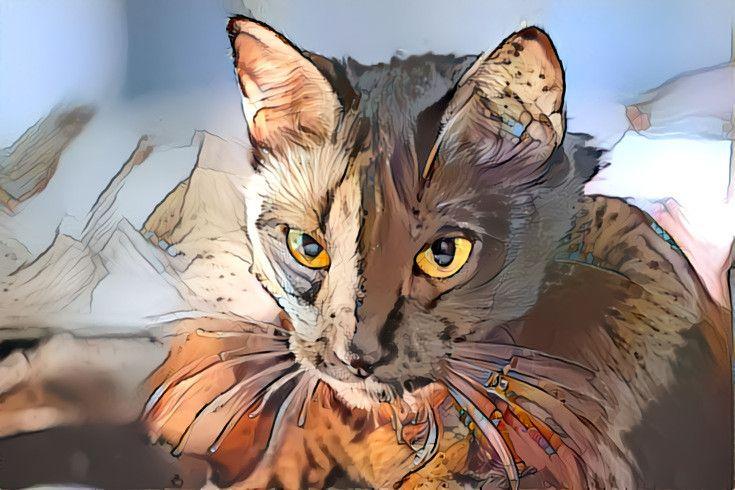 feinde der katzen  kinder ausmalbilder