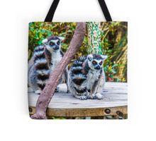 A pair of Orange-Eyed Ring-Tailed Lemurs Tote Bag