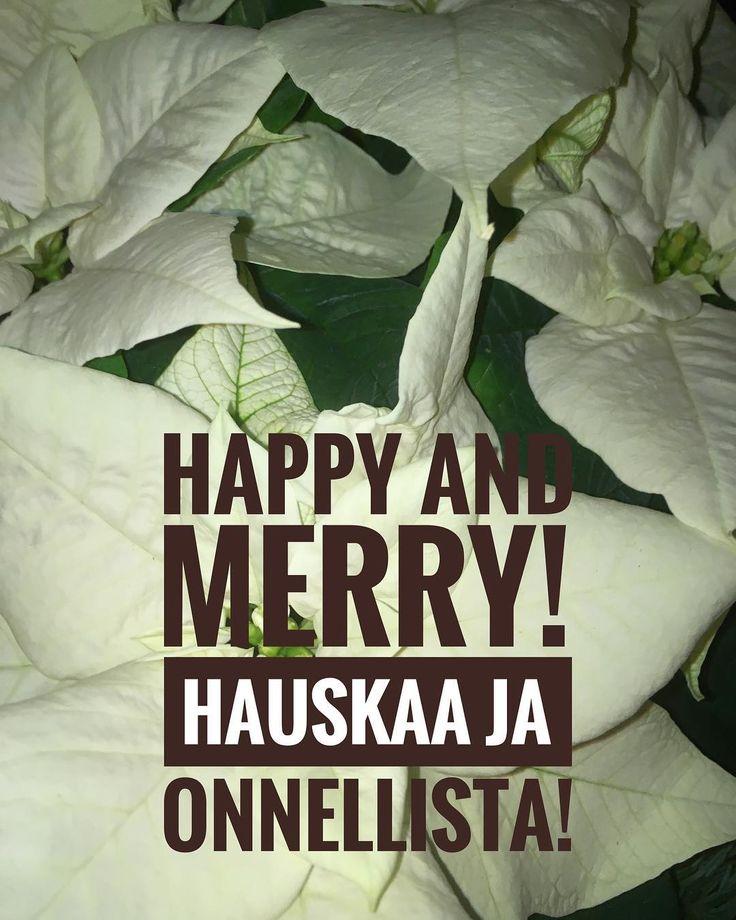 Happy and merry! Hyvää ja onnellista!