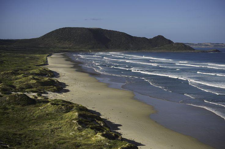 The Tarkine Coast
