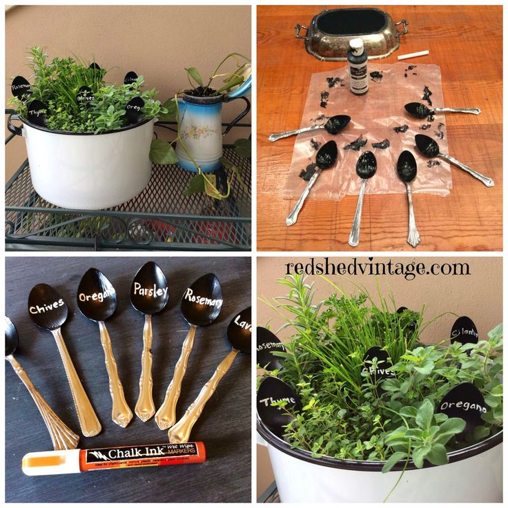 Portable Pot Of Cooking Herbs
