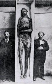 Abb. 2 Prof. McGee's Moundbauer-Mumie, die in den 'Grüften' der Smithsonian Institution verschwand