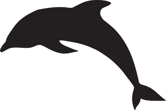1000 id es sur le th me tatouage de dauphins sur pinterest. Black Bedroom Furniture Sets. Home Design Ideas