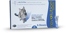 Control Fleas on Cats, Prevent Heartworms in Cats – REVOLUTION
