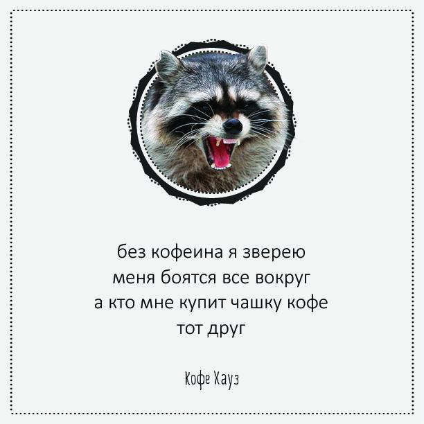 #кофе #стишки #порошки #юмор #прикол