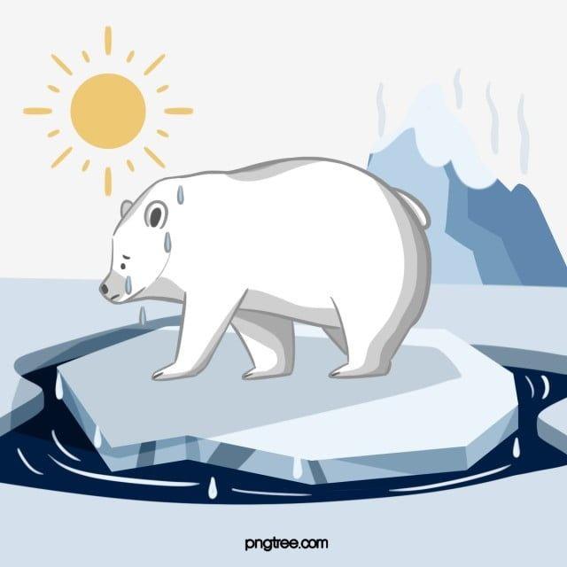 Hand Drawn Polar Bear Glacier Element Polar Bear Ocean Temperature Png Transparent Clipart Image And Psd File For Free Download Polar Bear Illustration Polar Bear Baby Polar Bears