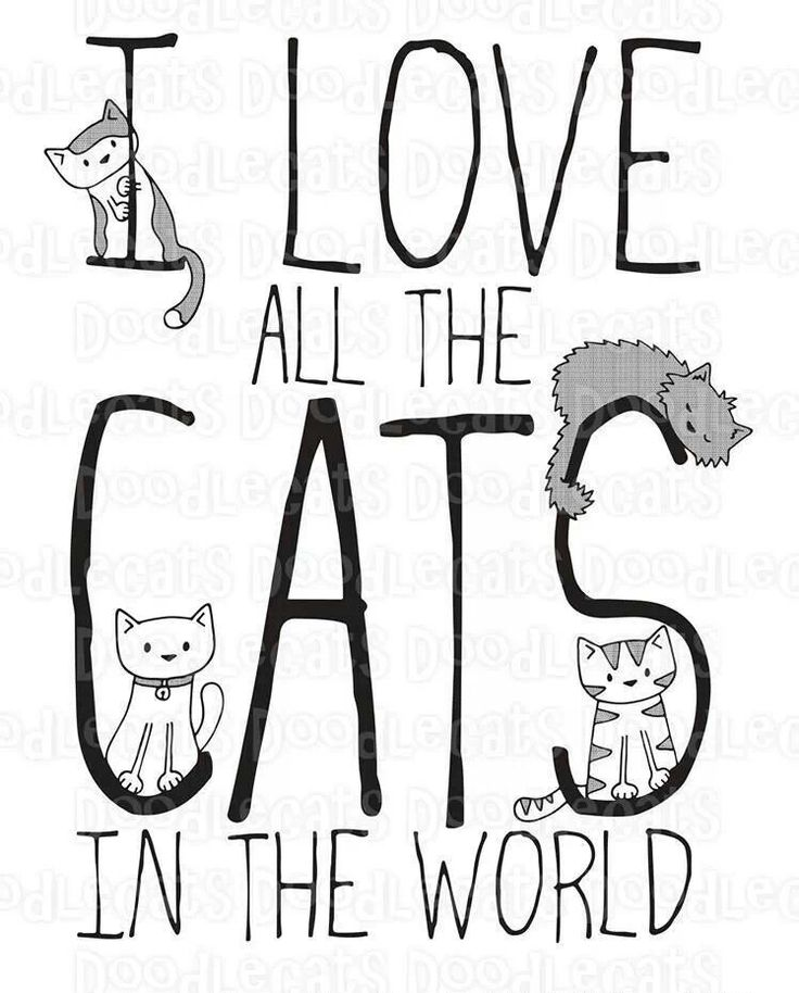 La loca de los gatos