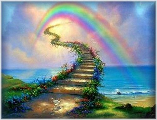 """de regenboogbrug"" The rainbowbridge, the place for all our beloved animals who…"